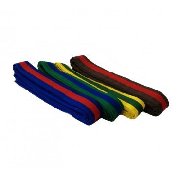 Coloured Belts with Coloured Stripe (1)